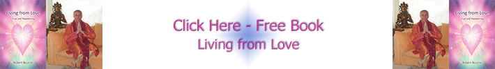 Free book The Divine Message About You plus about the New Awakening Process